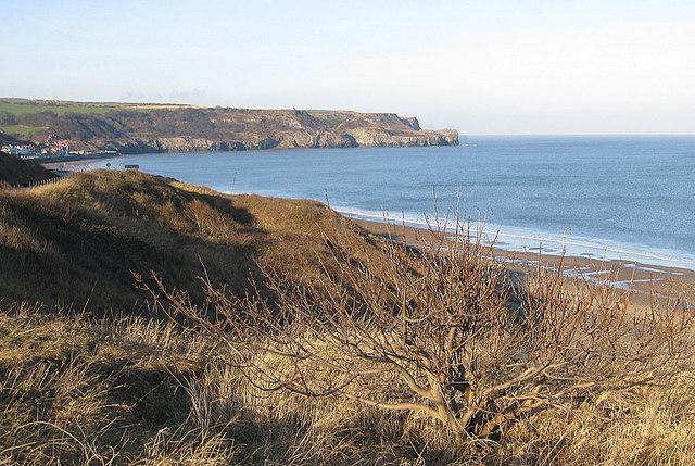 Cliffs, SE of Sandsend