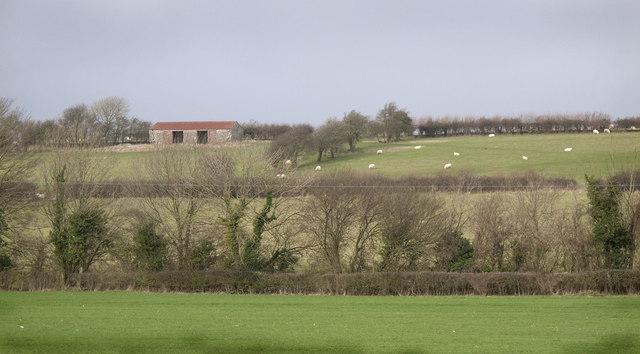 Farm Buildings on Coed Ffynnon Dyfrig
