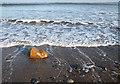 NZ8612 : Ebb tide, Sandsend by Pauline E