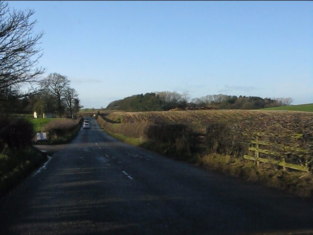 Pexhill Road near Thornycroft Hall