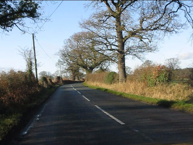 Salters Lane west of the track to Hodgehill Cottages