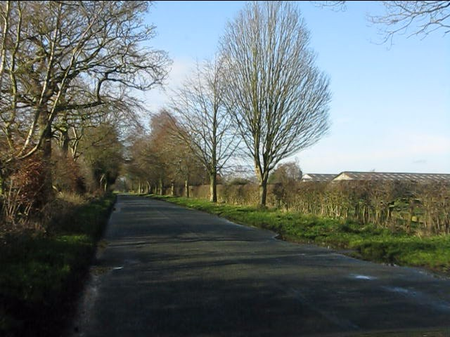 Forty Acre Lane near Beechwood Farm