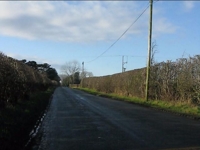 Long straight on Twemlow Lane