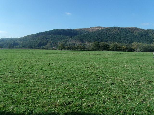 Looking towards Cae Cwm