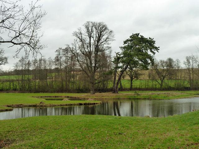 Fishing pond, Penshurst Park