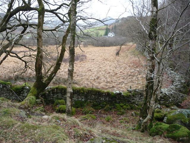 Field corner in the flood plain of the Afon Llugwy at Capel Curig