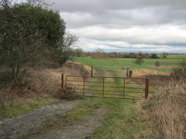 Field gates to farmland north of Newton Morrell