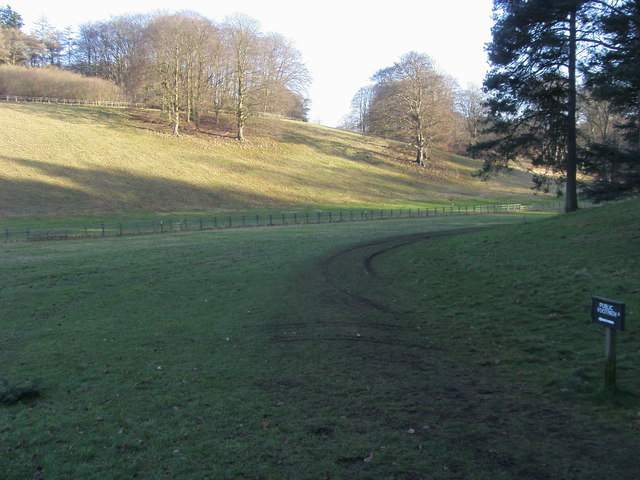 Footpath down towards The Lake