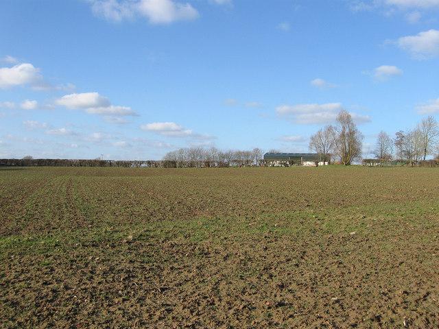 Sawpit Field