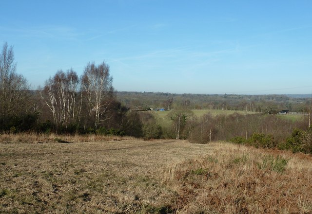 View from the northern slope of Red House Common