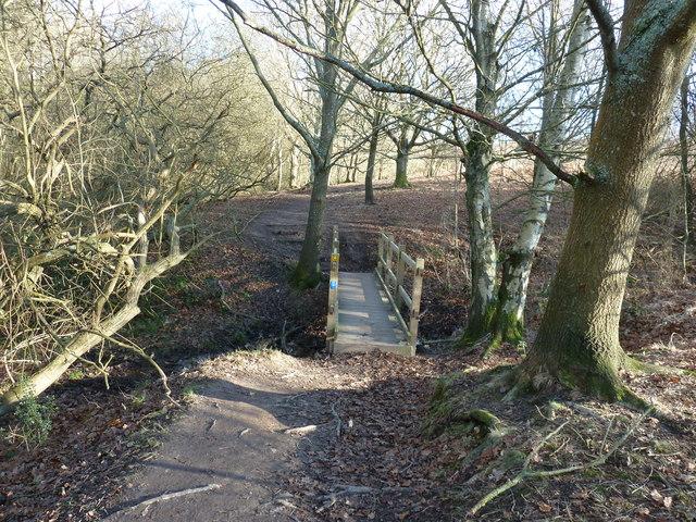 Footbridge on Red House Common