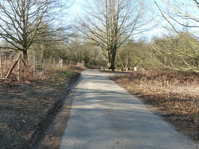 Driveway to Broadwater House