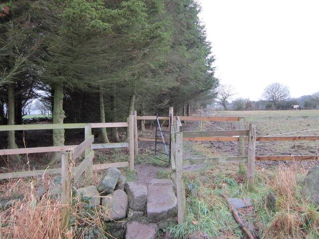 A footpath leading towards Rawdon