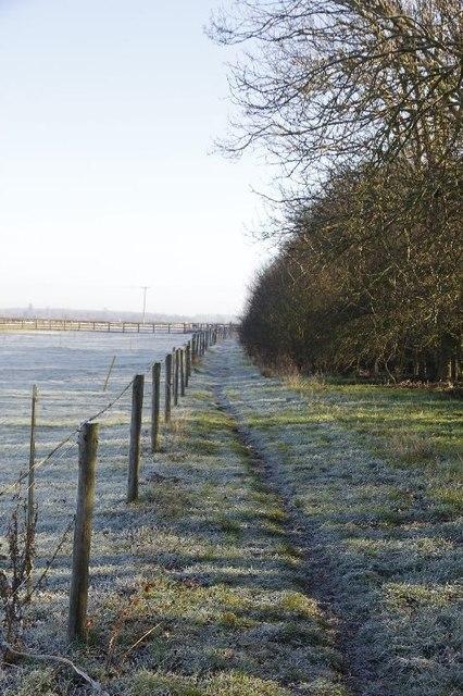Footpath by the railway