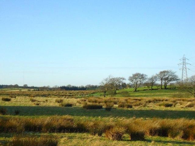 Auchengean, rough pasture [2]