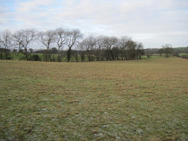 Fields  west  of  Kirby  Underdale