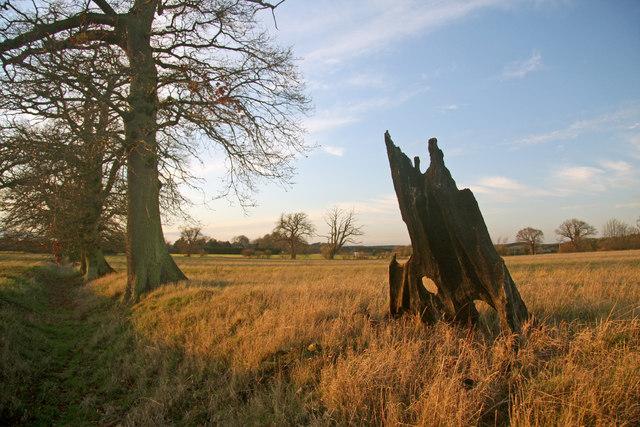 Former parkland, Little Saxham