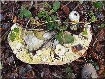 TQ1372 : Is it a pizza?  Was it a UFO? by Stefan Czapski