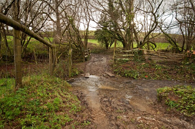 A ford next to a bridge on Coney Gut near Coombe Farm