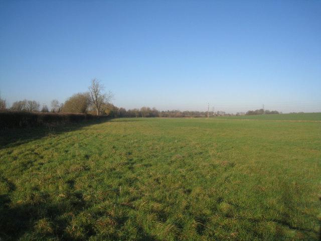 Farmland near Poland Mill