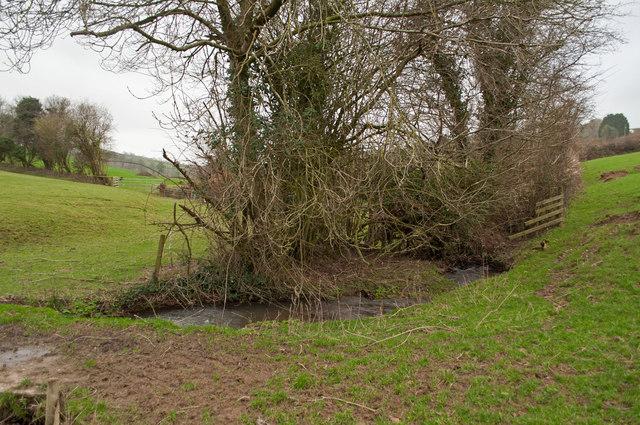 Coney Gut flowing downstream from a footpath near Dean Farm