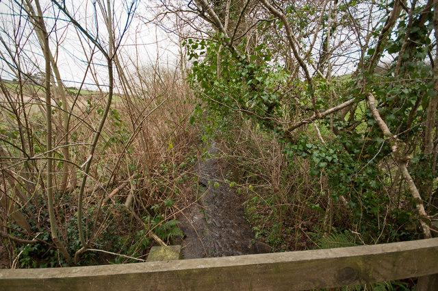 Looking upstream from a footbridge on Coney Gut near Middle Dean Farm