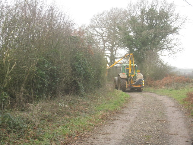 Hedge trimming by Jeffery's Copse