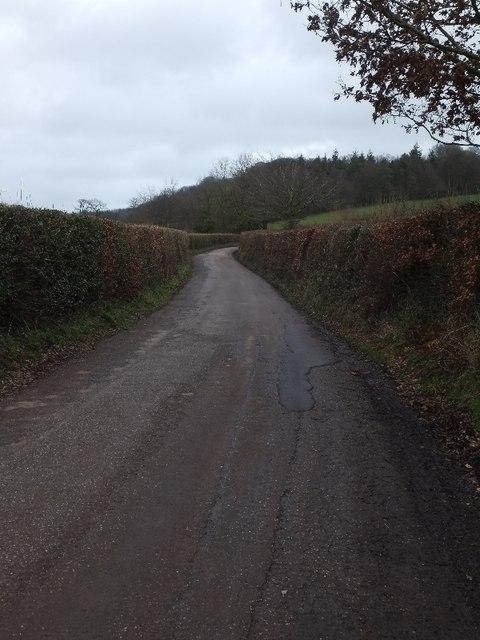 Road east of Birchen Oak