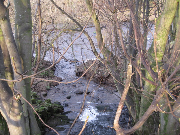 Confluence of Crossley Burn and River South Tyne