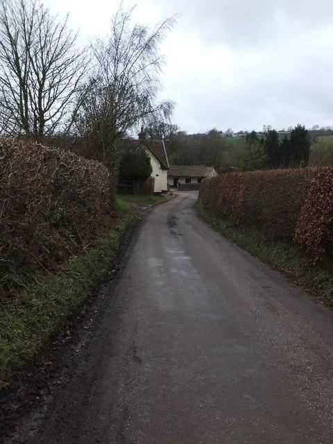 The road to Birchen Oak