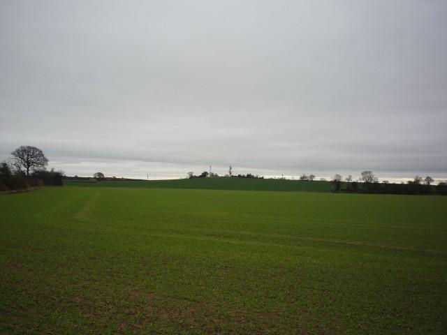 Towards Stillingfleet Hill