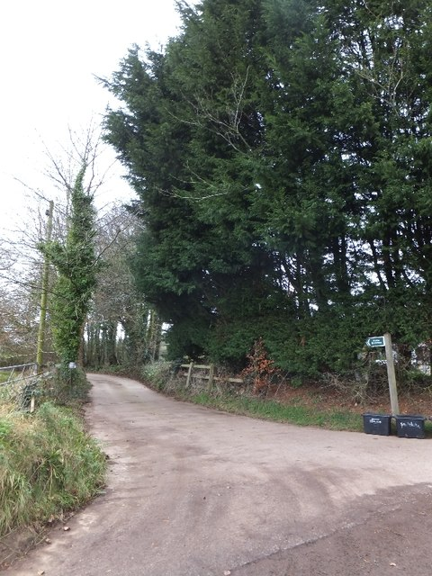 Footpath near Birchen Oak