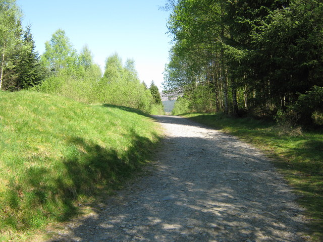 A cycle track in Kirroughtree Forest [2]