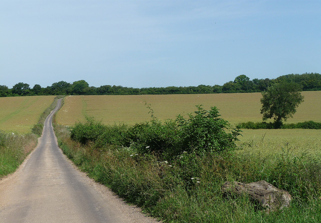 Country road near Whitchurch (1)