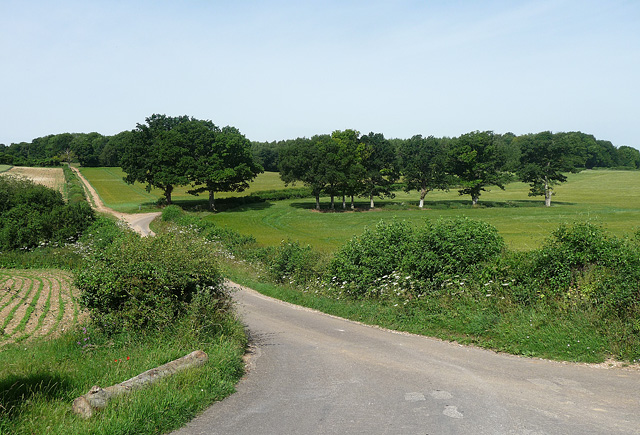 Country road near Whitchurch (2)