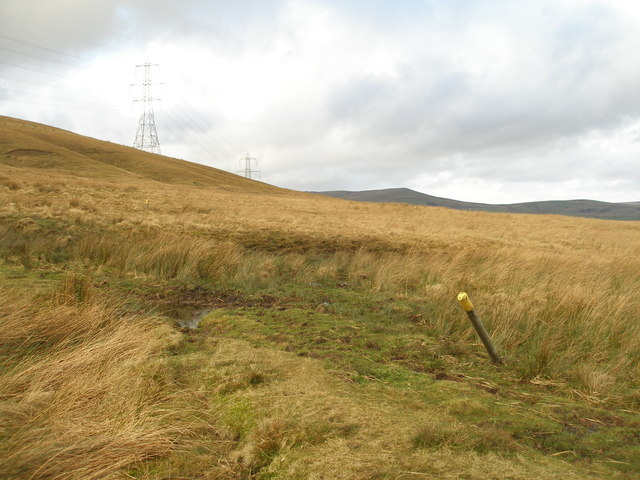 Footpath on Inchfield Pasture