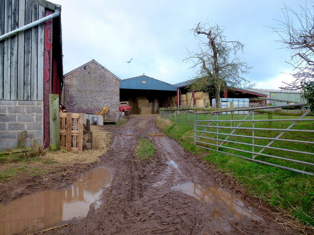 Elm Green Farm