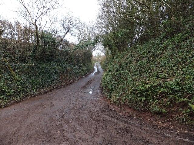 Minor road to Fillbrook Farm
