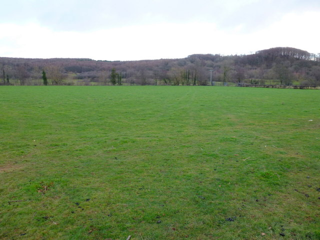 Pasture land in the Dore valley