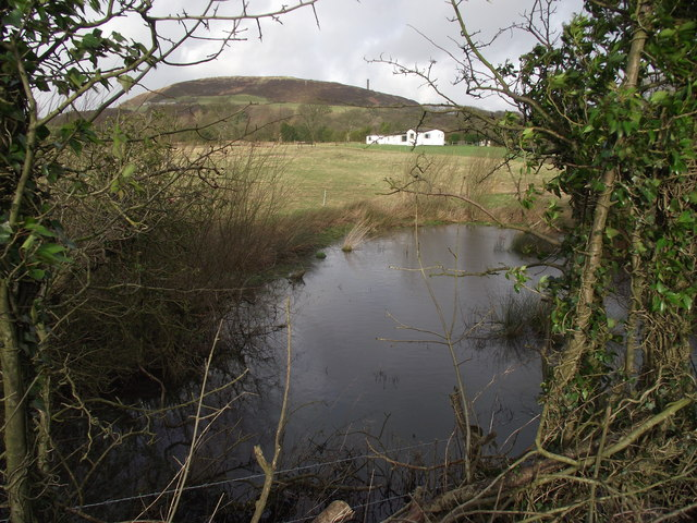 Pond at Holcombe Brook