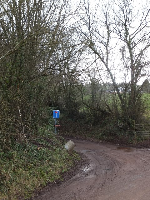 Track to Hayne Farm; the north end of Hayne Lane