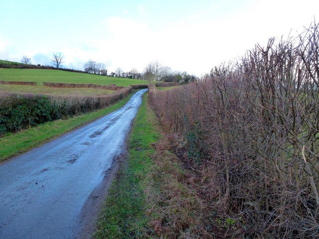 Wernddu Lane