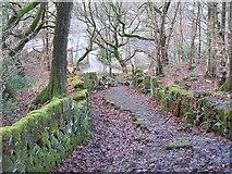 SD9321 : The old line of Birks Lane, Walsden by John Slater