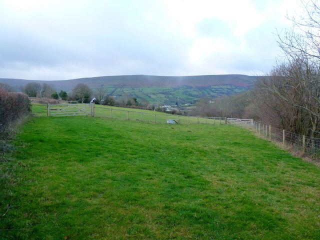 Pasture by Old Bryn