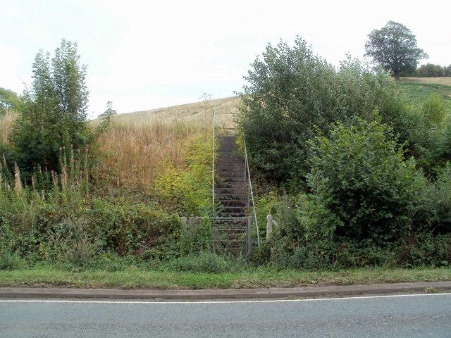 Steps up to the railway near Pontrilas