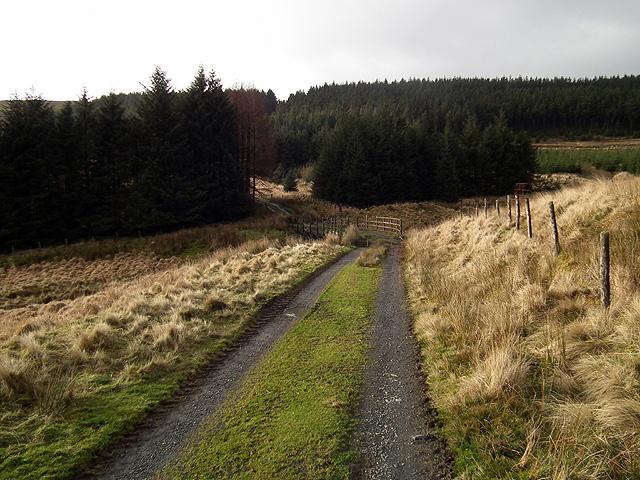 The track to Cefn yr Esgair, Drosgol et al