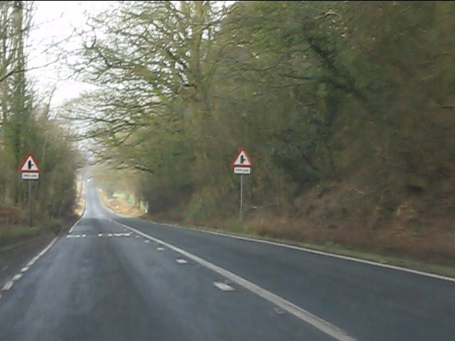 A458 in Broad Oak Wood