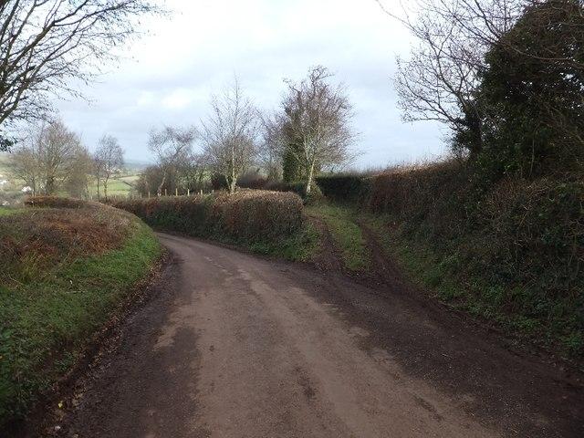 Access to two fields near Billingsmoor