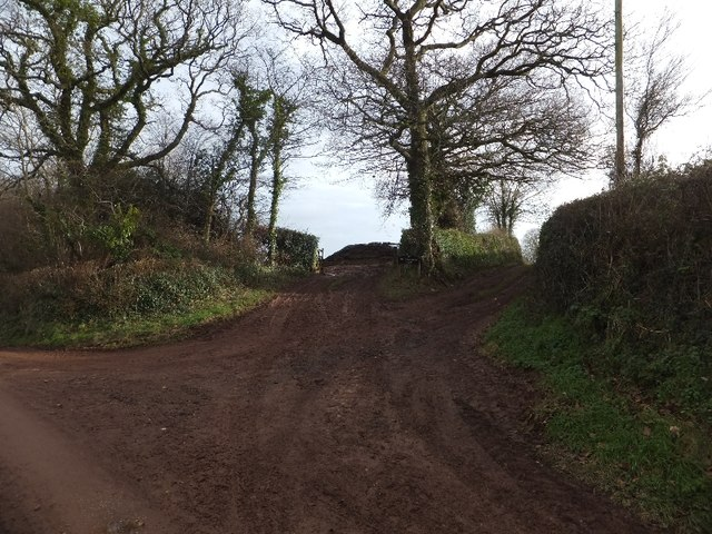 Access to fields and Billingsmoor Farm