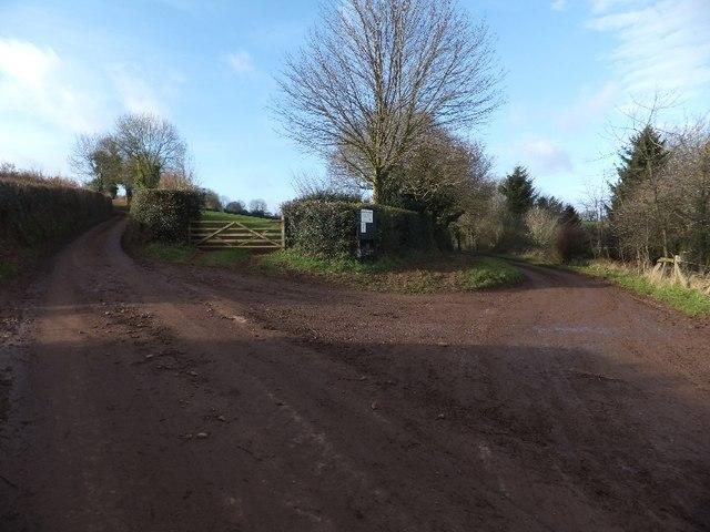 Access road to Billingsmoor Farm